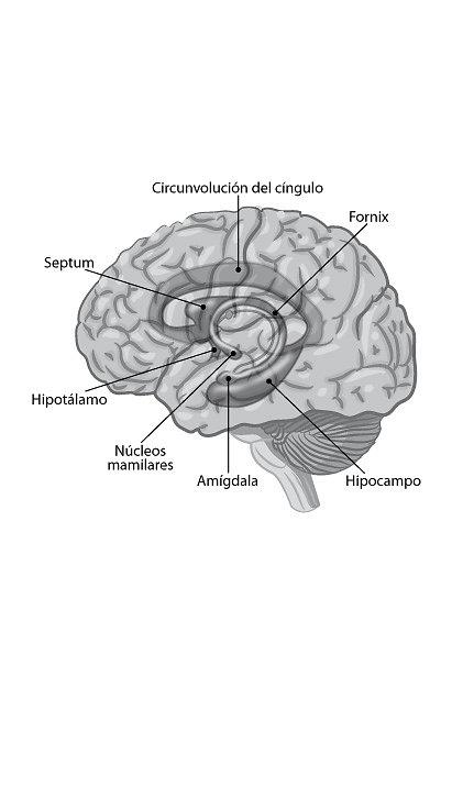imagen13-1.jpg